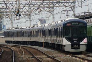 3000sakura